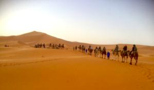 Bucket List Sleep in the Sahara