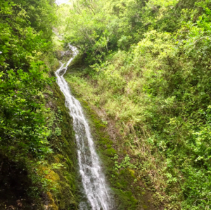 Bucket List Hike to a Waterfall