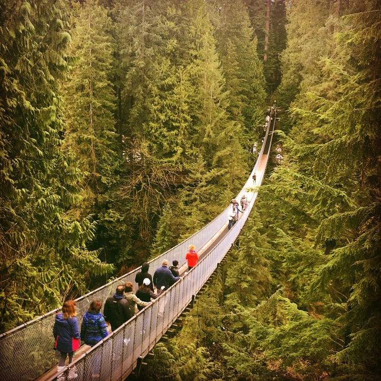 Is the Capilano Suspension Bridge Worth a Visit?