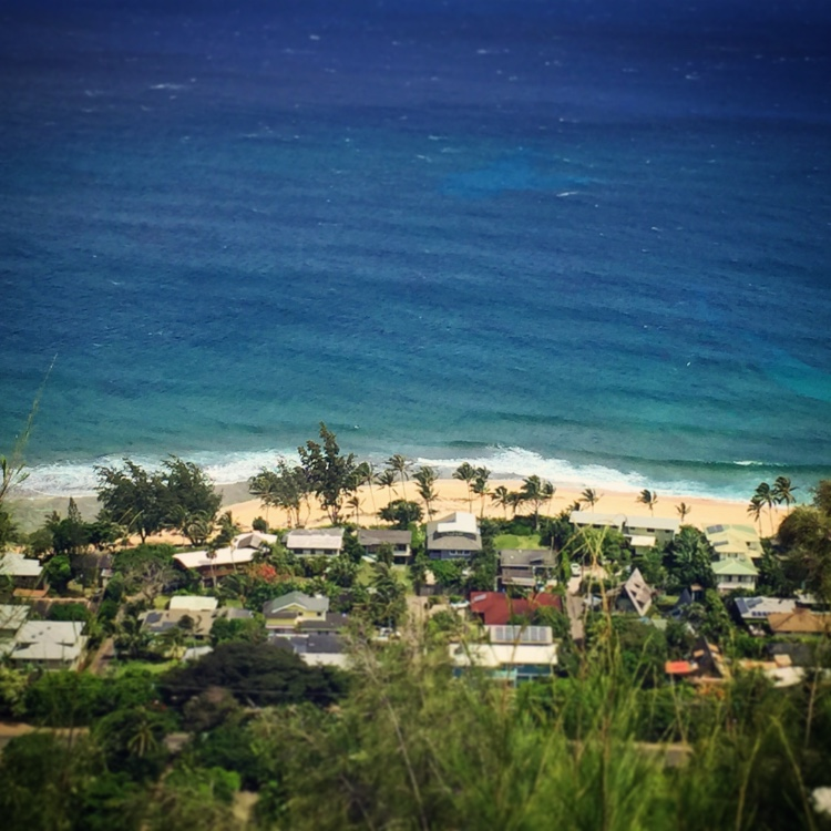 view of sunset beach from Ehukai Pillbox easy hikes on Oahu