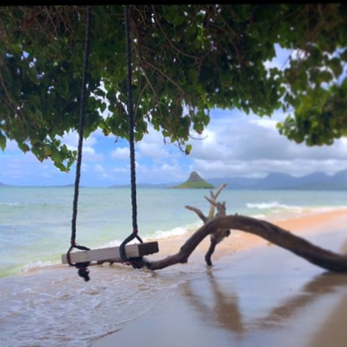 Find a Beach Swing