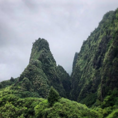 Iao Valley Opener