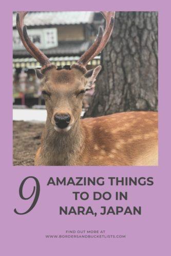 9 Amazing Things to Do in Nara, Japan #nara #japan #deer