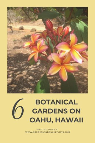 6 Botanical Gardens on Oahu, Hawaii #oahu #hawaii #hoomaluhia #localguide #gardens #botanicalgardens