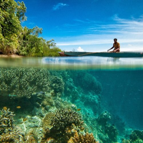 man on boat over thriving reef