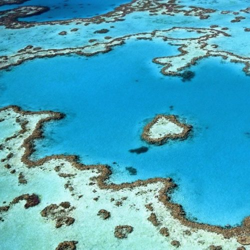 heart-shaped reef from air