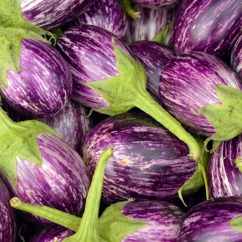 pile of round purple and white eggplant