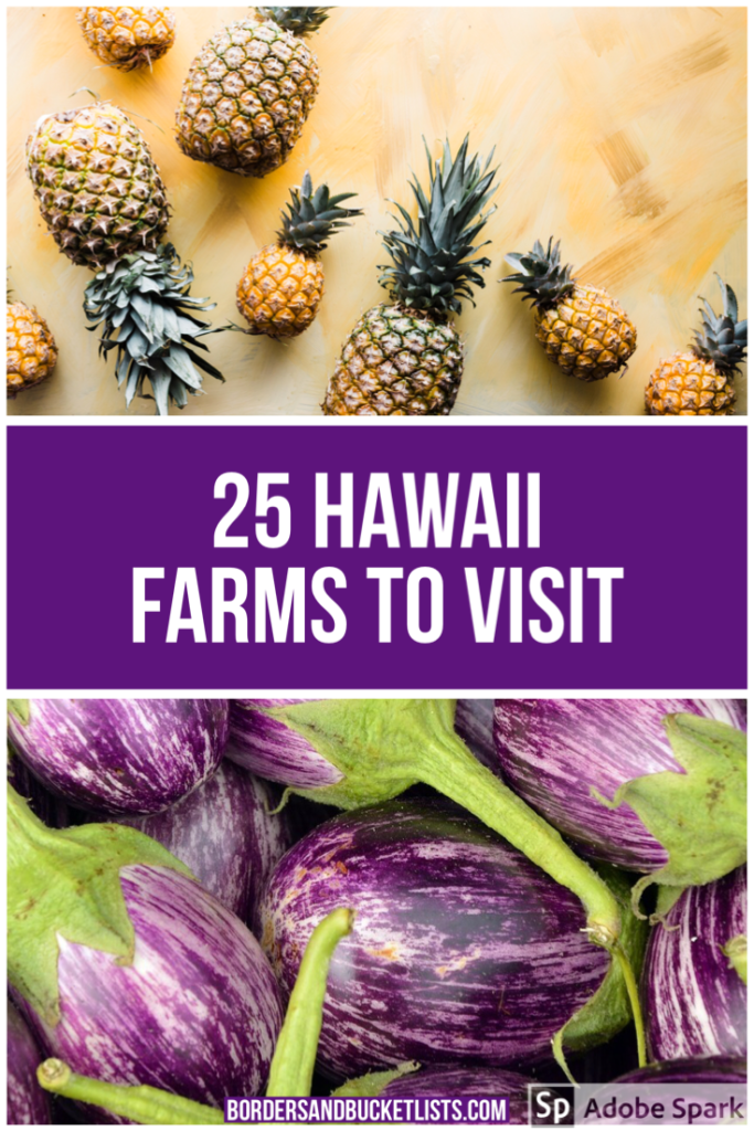 hawaii farms, hawaii farm, hawaii farmers market, farms in hawaii, oahu farms, maui farms, big island farms, kauai farms, hawaiian farms, coffee farms in hawaii, hawaiian coffee farms, kona coffee farms, things to do in hawaii #hawaii #farms #farming #farmersmarket