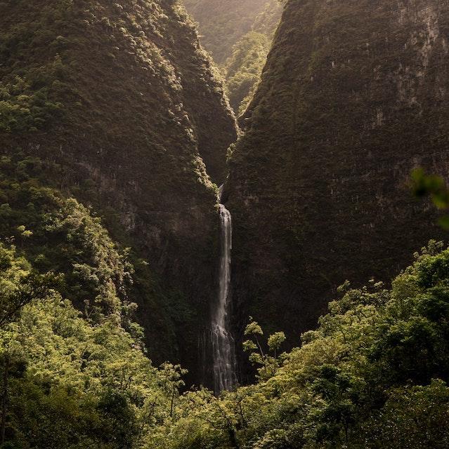 thin waterfall flowing through greenery Kauai waterfall