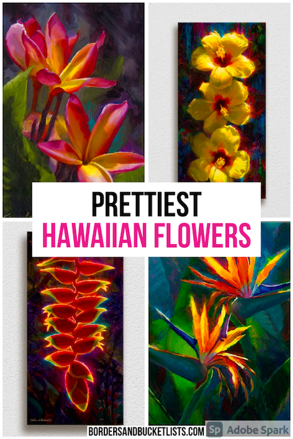 Hawaiian flowers, prettiest Hawaiian flowers, Hawaii flowers, flowers in Hawaii, flowers of Hawaii, Hawaiian flowers drawing, Hawaiian flowers painting, Hawaiian flowers tattoos, Hawaiian flowers drawing tropical, tropical Hawaiian flowers, tropical flowers, Hawaiian plants, tropical plants, Hawaii flower painting, Hawaii flowers wallpaper, Hawaii plumeria, Hawaii hibiscus, flower Hawaii drawing #hawaii #flowers #paintings