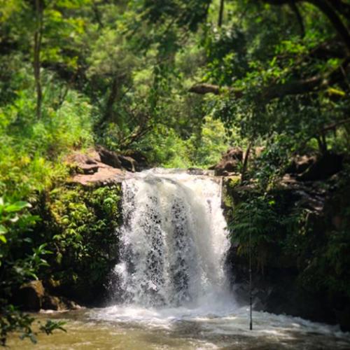 Twin Falls Maui waterfalls