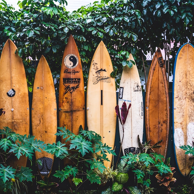 row of surfboards Hawaii FAQs