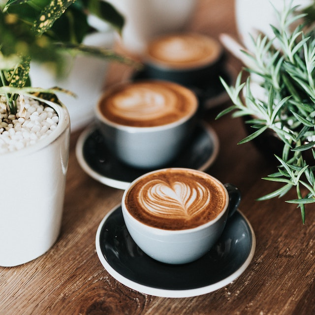 best Hawaii coffee companies three cappuccino cups surrounded by herbs