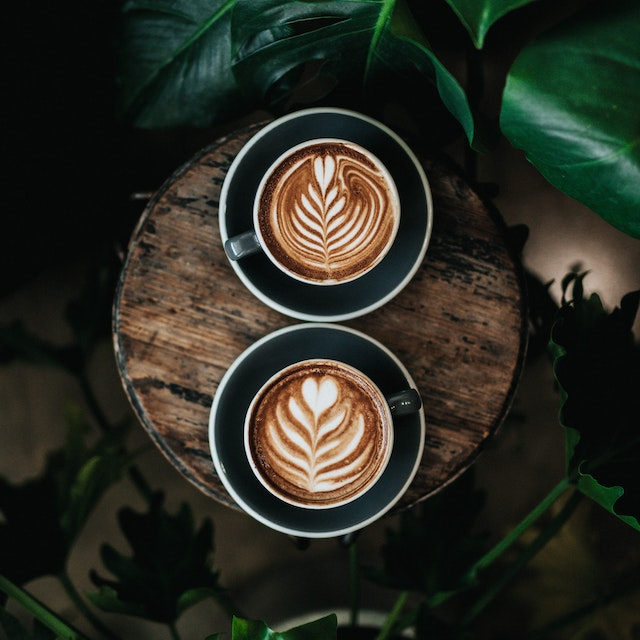 two cappuccinos surrounded by plants