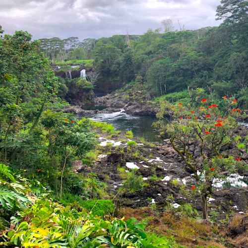 river with waterfall in the distance things to do in Hilo